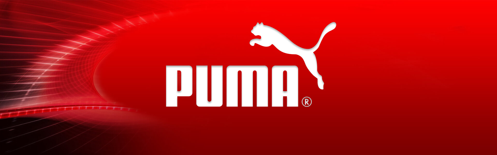 Case Study PUMA B2B E Business Headline